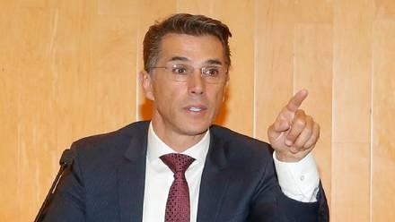 Diputado federal, Sergio Mayer