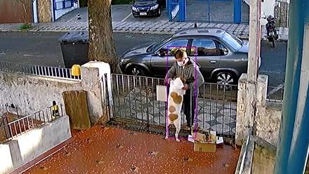 Roban la ropa de un perro