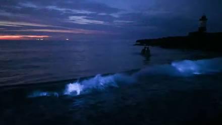 Mar que brilla en la oscuridad