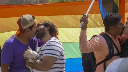 Genes gay otorgarían ventajas evolutivas