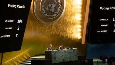 El mensaje de la ONU
