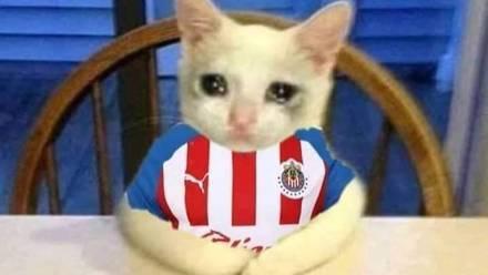 Meme Chivas