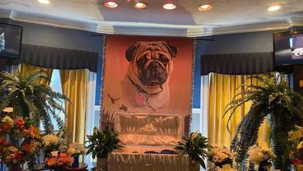 Funeral del perro 'Dexter'
