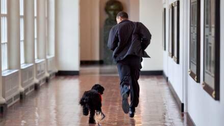 Barack Obama y su perro
